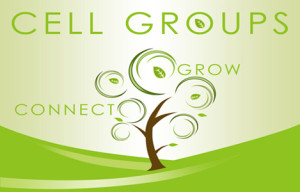 cell group