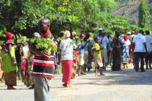 burundi_trees